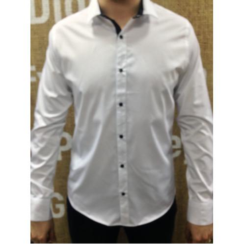 Рубашка д/р ROMUL & REM 6501-019-04RR