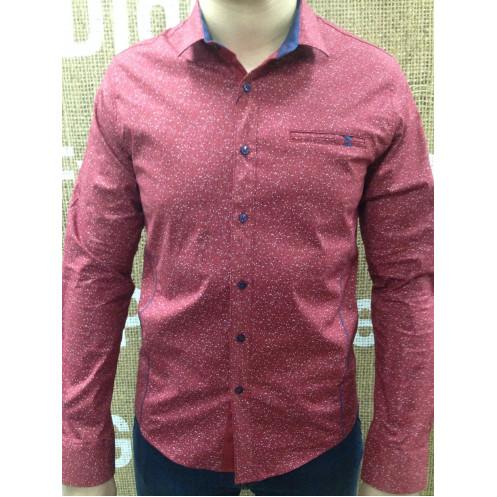 Рубашка д/р ROMUL & REM 6504-019-02RR